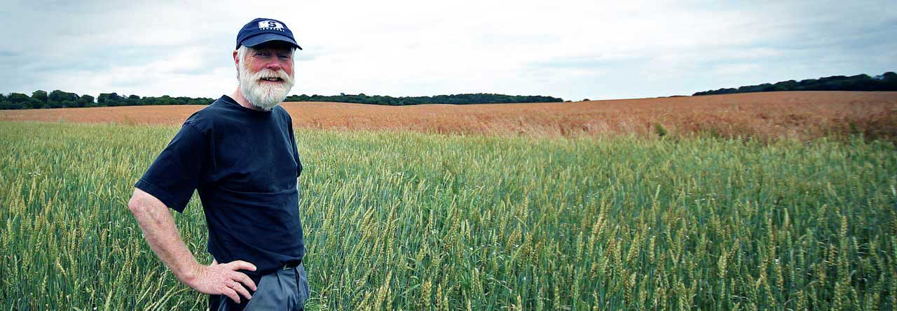 Food and Beverage organization farmer standing in wheat field
